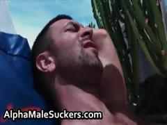 Amazing hardcore gay going to bed and sucking