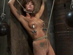 Tied up and gagged Gia Dimarco gets her tits painful