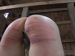 Beauty gets her nipples infringed around abeyant of painful clamping